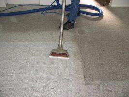 voce-realmente-entende-como-limpar-tapetes